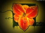 Graffity _086