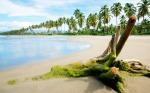 Islands_34