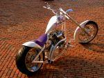 Moto (28)