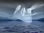 wxp  (93)